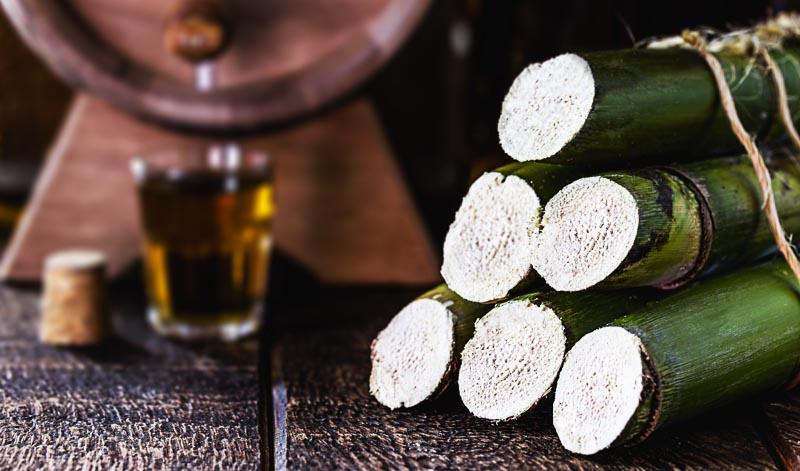 Rum Martinique gilt als eine Sonderform des Rhum Agricole und wird deswegen als besonders hochwertig angesehen.
