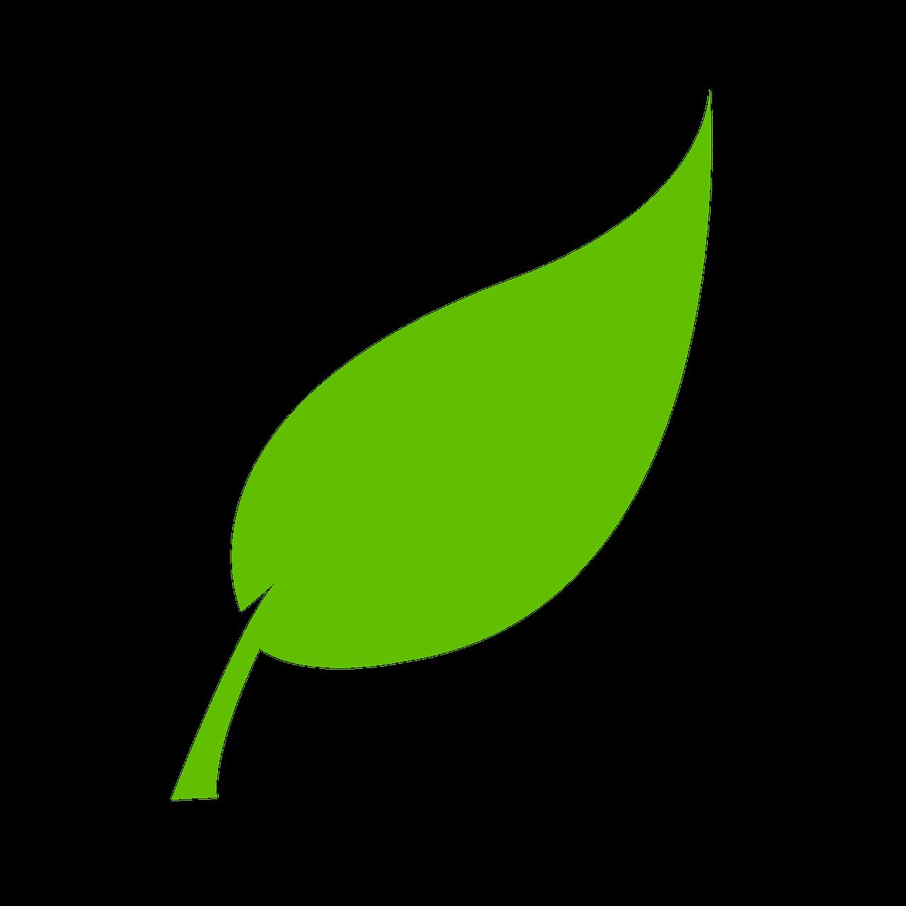 leaf-310555_1280.png?1622722371316
