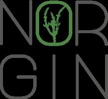 NORGIN