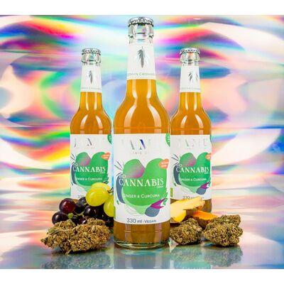 6x BIO CANNABIS DRINK mit Ingwer & Curcuma - JAMU Limonade 2