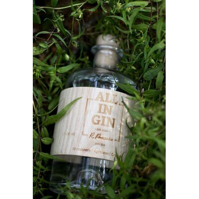 ALL IN GIN - Schwarzwald Dry Gin Beauty Shot