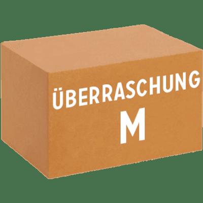 Überraschungskarton M (12 x 0,33 l verschiedene Craft Biere)
