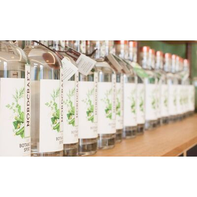 Hamburger Destilleriekunst im Superduo (1x NORDCRAFT Dry Botanical Spirit Dill & Gurke + 1x NORDCRAFT Dry Botanical Spirit Bete & Beere) Beauty Shot