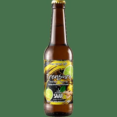 9x Treasure - Ingwer Ale