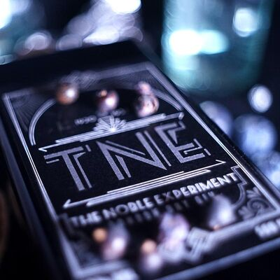 TNE The noble Experiment - London Dry Gin Beauty