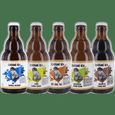 24er Mixkarton (5x Lager + 5x Rye Pale Ale + 5x Hefeweizen + 5x IPA + 4x Brown Ale)