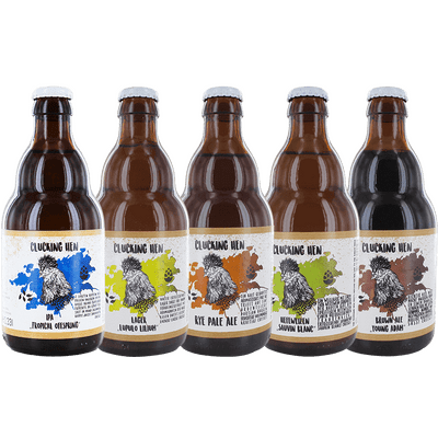 Probierset Mix Sechserpack (2x Lager + 1x Rye Pale Ale + 1x Hefeweizen + 1x IPA + 1x Brown Ale) 2