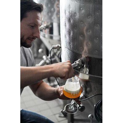 Finne Bio Craft Beer 24er Mix (6x Helles + 6x Pils + 6x IPA + 3x Scottish Ale + 3x Natur Radler) 3