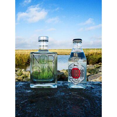 NORGIN Geschenkbox (1x London Dry Gin + 2x Goldberg Japanese Yuzu Tonic Water) 3