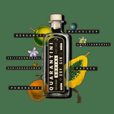 Quarantini Social Dry Gin 2