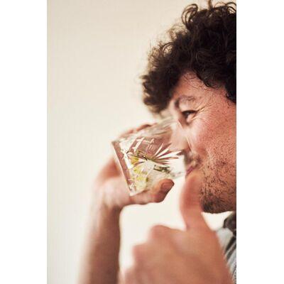 Steinwild Vermouth WHITE 5